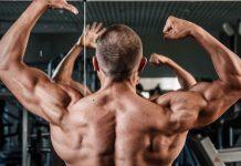 gain-muscle-regle
