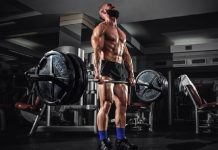 programme musculation personalise