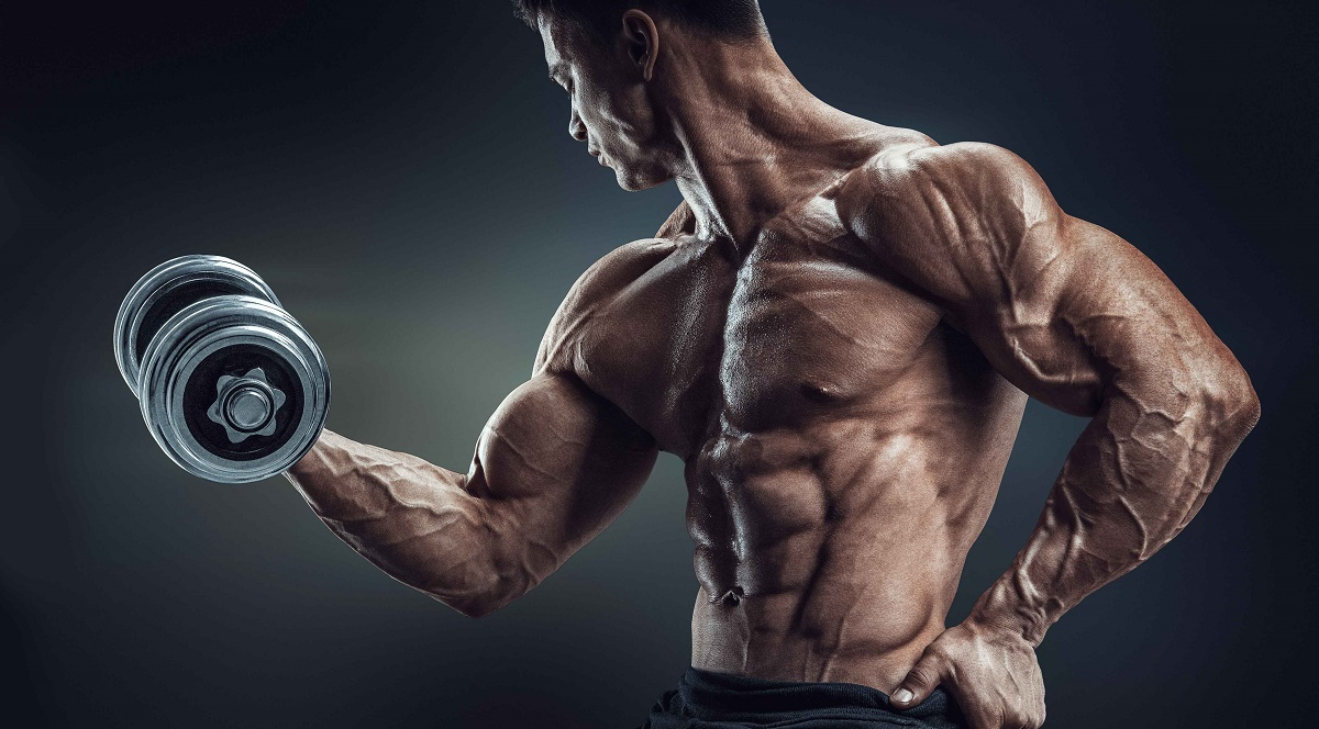série de 100 musculation