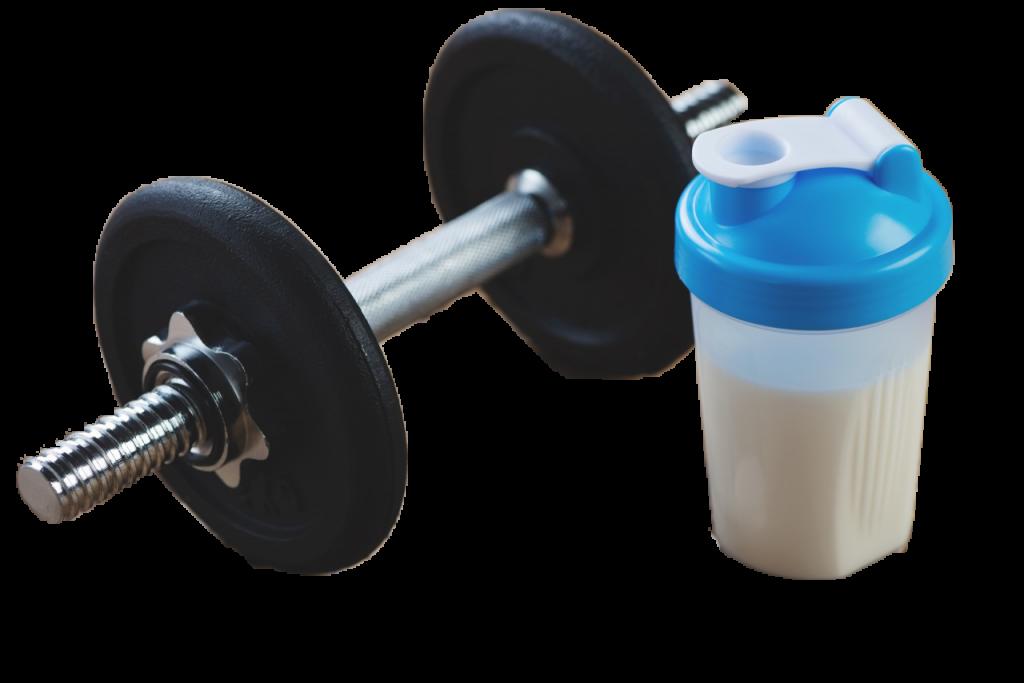 musculation alimentation